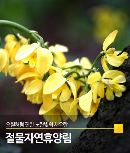 06_절물자연휴양림-qhsans.jpg