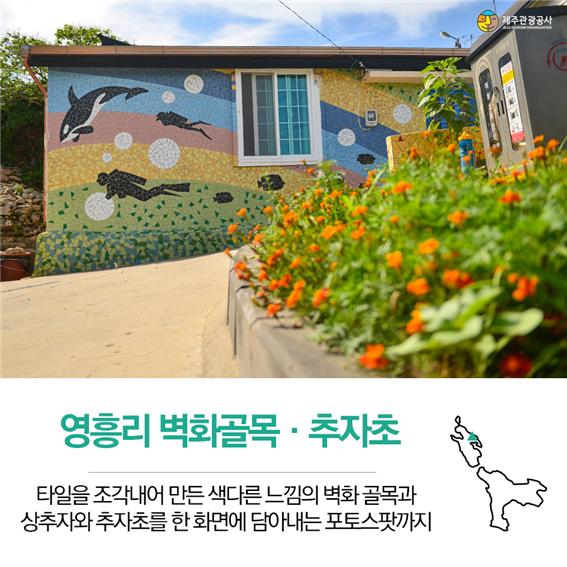 추자-영흥리.png