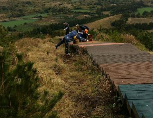 (사진)표선면 영주산 산책로 환경정비 및 도색작업 실시.PNG