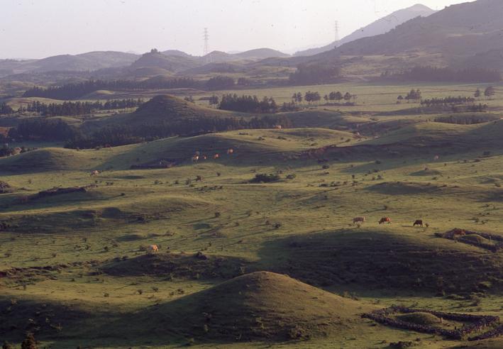동거미오름-일대의-전경(1980.jpg