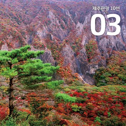 제주관광10선_10월_보도자료3.jpg