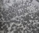 페퍼포그 발사대 막아선 '시민의 힘' 최루탄 난사에 격렬한 투석전 전개