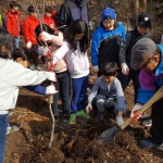 애월초더럭분교, '푸른 숲 나무 심기'행사 참여