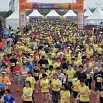 제22회 국제관광마라톤축제...제주바다 '감동의 레이스'