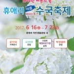 2017 여름 휴애리 수국축제 16일 개막