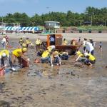 적십자봉사회 회원들, 이호테우해수욕장 바다정화 활동 전개