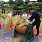 초등학생들이 직접 기른 벼 추수…'수확의 기쁨 만끽'