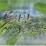 KCTV 제주방송, '곶자왈, 생명水를 품다' 25일 첫 방송