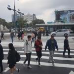 갑자기 사라진 시청 앞 '횡단보도'...시민들 '어리둥절'