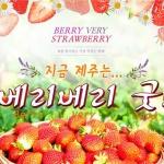 제주관광공사, '제주 베리 베리 굿!' 이벤트 개최