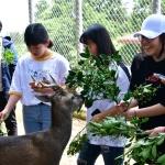 서귀중앙여중, 제주야생동물구조센터 이색 야생동물 체험학습