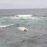 제주 모터보트 침몰 바다에 빠진 50대, 인근 식당 주인 등이 구조