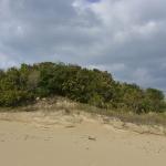 사라질 위기 처한 '왕가봉수대', 보존대책 시급