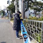 화북동, 관내 주요도로변 불법광고물 정비