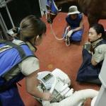 렛츠런팜 제주, 카카오톡 말(馬) 진료서비스 제공