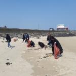 표선면, 해안변 일대 환경정비 실시