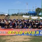 '양돈농협-감귤농협', 제3회 제주농협본부장기 야구대회 결승 진출