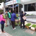새마을지도자연동협의회 고추묘종 무상나눔 행사 실시