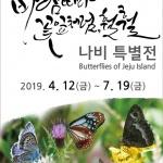 제주민속자연사박물관, '바람 따라 꽃잎처럼, 훨훨' 나비특별전 개최