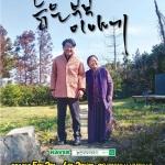 명품 연극 '늙은 부부이야기' 제주어 공연 개최