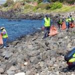 대륜동, 국세상담센터 봉사동아리 '혼디모영'과 해안가 환경정화 활동