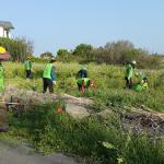 자연보호중앙회서귀포시협의회, 멸종위기 재라식물 자생지 환경정비