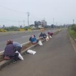 한림읍 대림리새마을부녀회 도로변 꽃길 정비