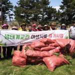 제주생태문화해설사협회, 생태계교란 외래 식물 제거 활동