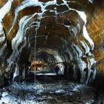 세계유산 거문오름용암동굴계 보존관리방안 연구 본격화
