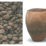 청동기시대, 제주에서 농경은 시작되었다