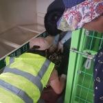 애월읍, 재활용 가능한 유해폐기물 폐건전지 수거