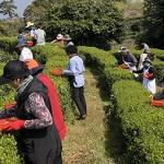 장애인 등 취약계층 자립 '제주형 사회적 농업' 내년 시행
