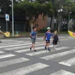 새서귀노인회, 교통안전캠페인 활동 전개