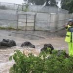 제주시, 태풍 타파 피해복구에 총력적 지원