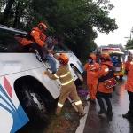제주 사려니숲길 인근서 관광버스 도랑에 빠져...20여명 부상