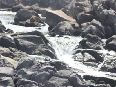 서귀포시 강정 지하수 유출